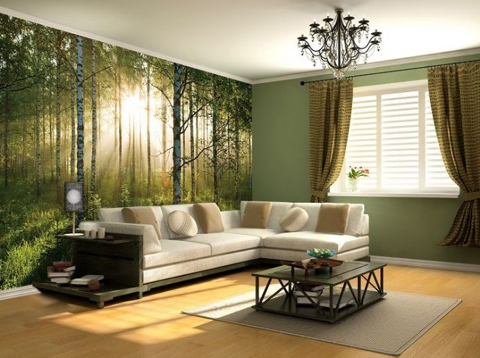 Sunny green Forest wall mural wallpapers | Online shop